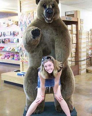 bear buttsex