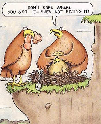 That ain't bird food!