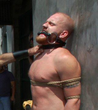 gay male bound in public