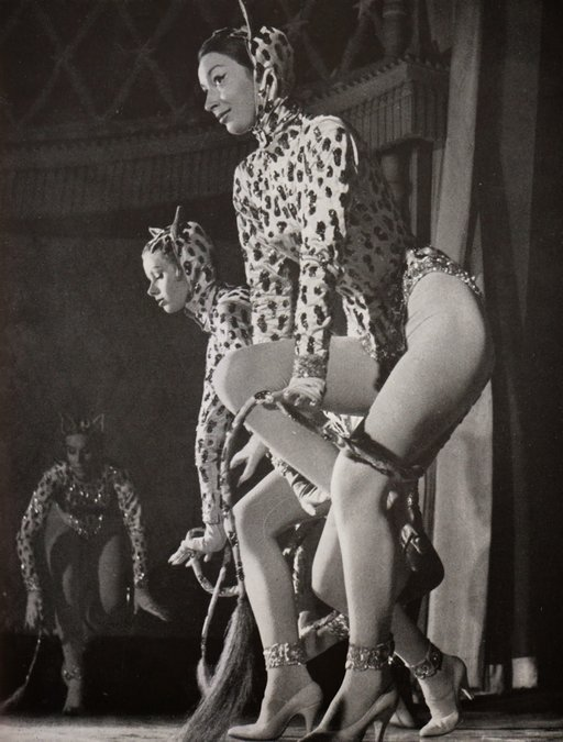 leopard girls in their catgirl outfits for the burlesque shows of Paris