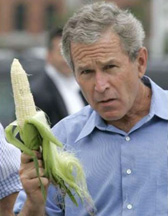 a politician with an ear of corn