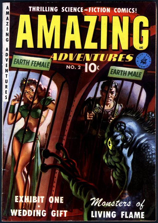 amazing adventures cover