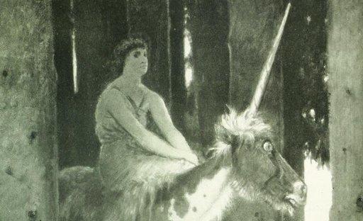 fuzzy unicorn