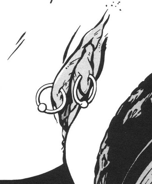 closeup of labia rings