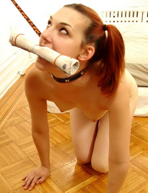 doggie girl on a doggy leash