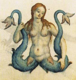 mermaid with two tails and a pussy