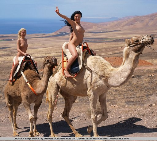 naked-camel-ride-02