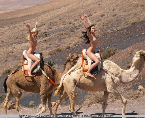 naked-camel-ride-03
