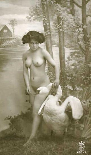 naked leda with swan