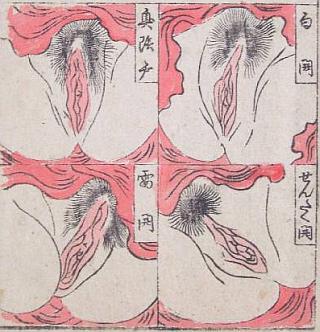 female anatomy shunga