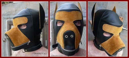 stockroom-two-tone-dog-hood-512