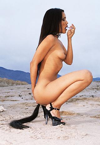 butt plug in the desert