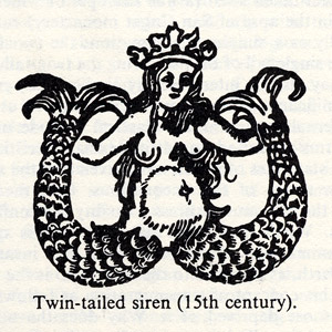 bawdy mermaid with two tails