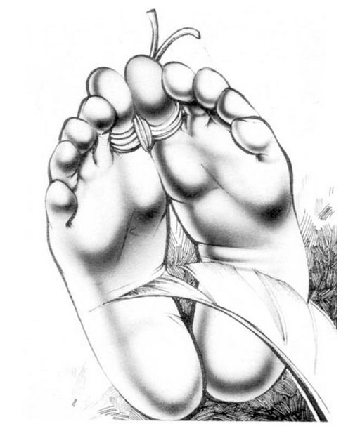 toes tied and feet tickled -- bondage tickling artwork by robert bishop