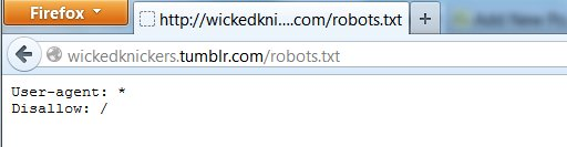 a sample robots.txt for an adult tumblr showing that all user agents are forbidden