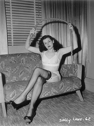 vintage pinup girl with a bullwhip
