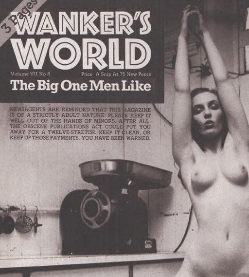 wank world parody porn cover